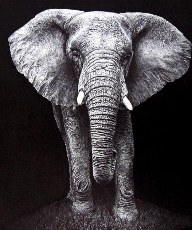 Dibujo a bolígrafo de un elefante.